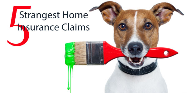 Home-Claims